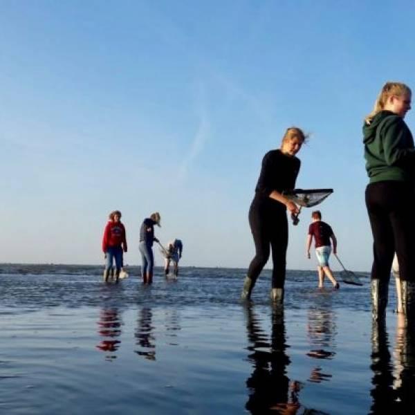5 vwo op Texel voor excursie biologie